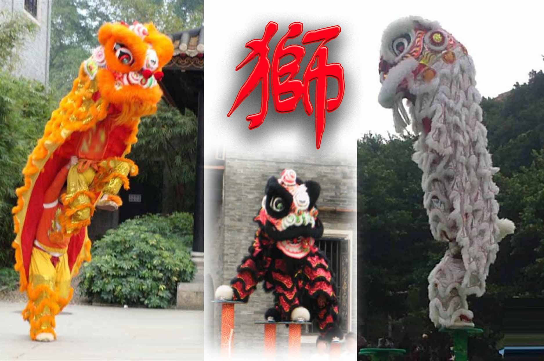Chinese lion dance set