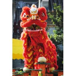 Chinese Lion Dance  complete set  Red size 3