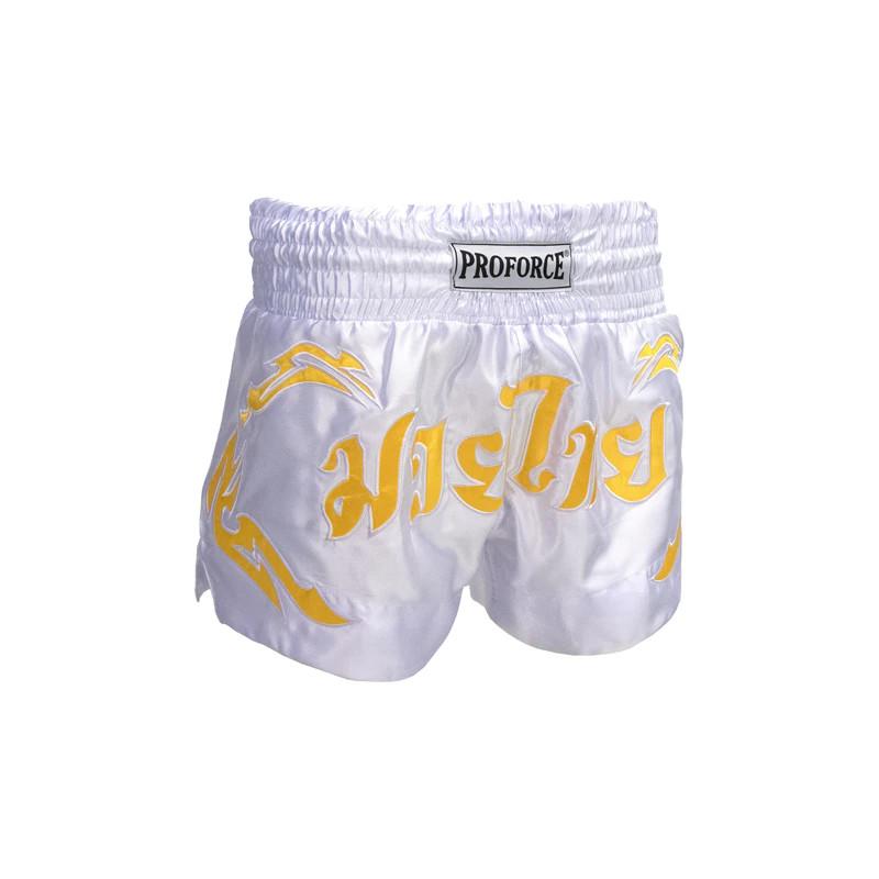 Choy Lay Fu(Cai Li Fo) kung fu-Basic Techniques