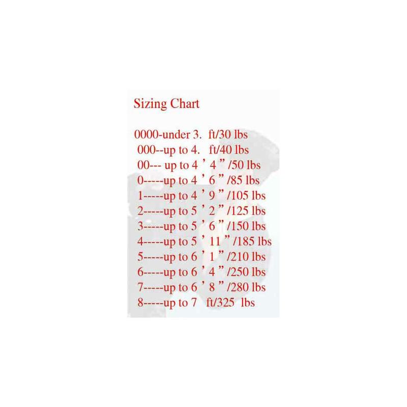 Choy Lay Fu(Cai Li Fo) Kung Fu-Intercepting Tiger Quan